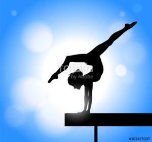 Viganò dd gym academy alle finali nazionali di ginnastica